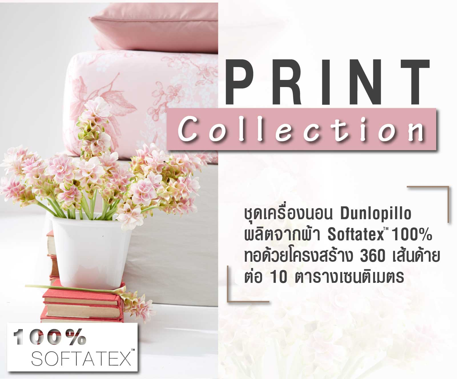 Print Collection DL 02B